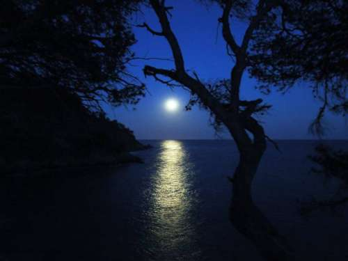 Balade nocturne - Rayol-Canadel-sur-Mer