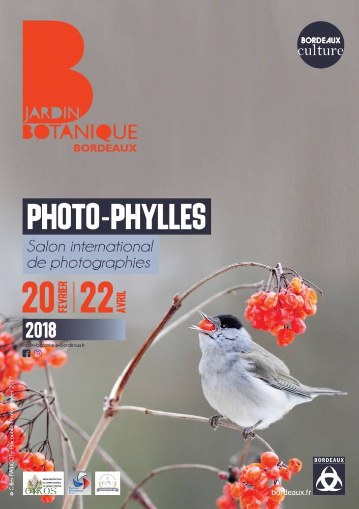Photophylles - Bordeaux