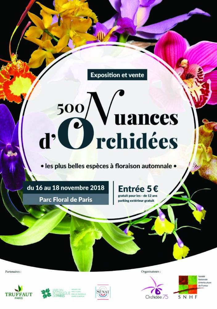 500 nuances d'orchidées - PARIS