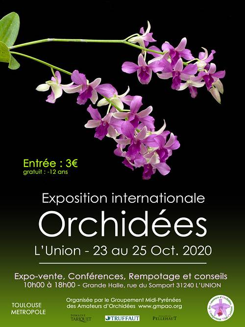 Exposition internationale d'orchidées, Grande Halle de l'Union (31)