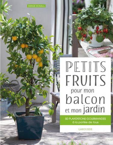 Petits Fruits Pour Mon Balcon Et Mon Jardin Livre De Serge Schall
