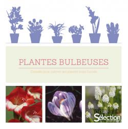 Plantes bulbeuses - Sélection Reader's Digest