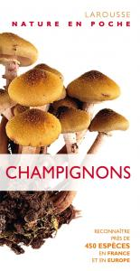 Champignons - Collectif