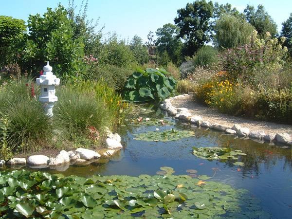 Les jardins aquatiques photo 5 - Les jardins aquatiques saint didier sur chalaronne ...