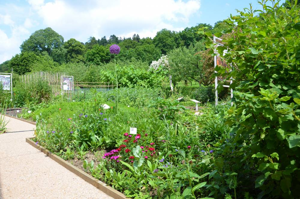 The Vegetable Garden and Orchard Conservatories<br>Of Revermont Museum photo 4