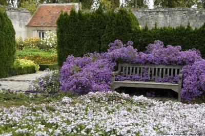 Jardins du nouveau monde gardens pinterest for Jardin du bout du monde