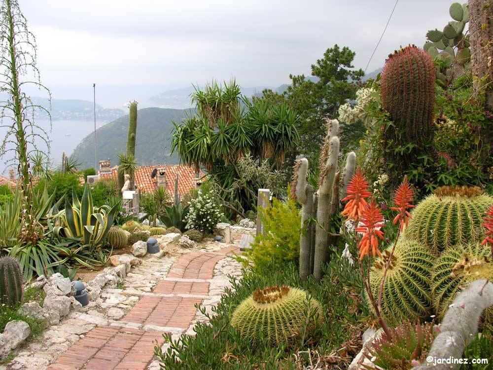 Exotischer Garten von Eze - Eze (06) - Alpes-Maritimes - Provence ...