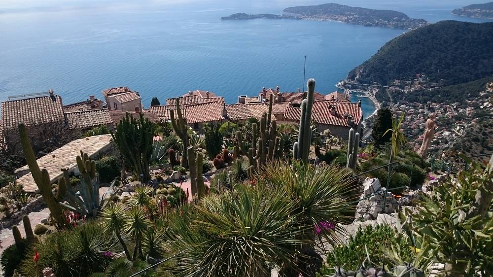 Exotic Garden Of Eze photo 11