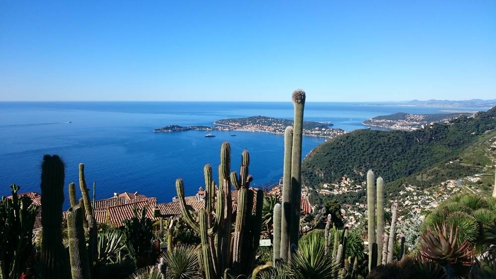 Exotic Garden Of Eze photo 12