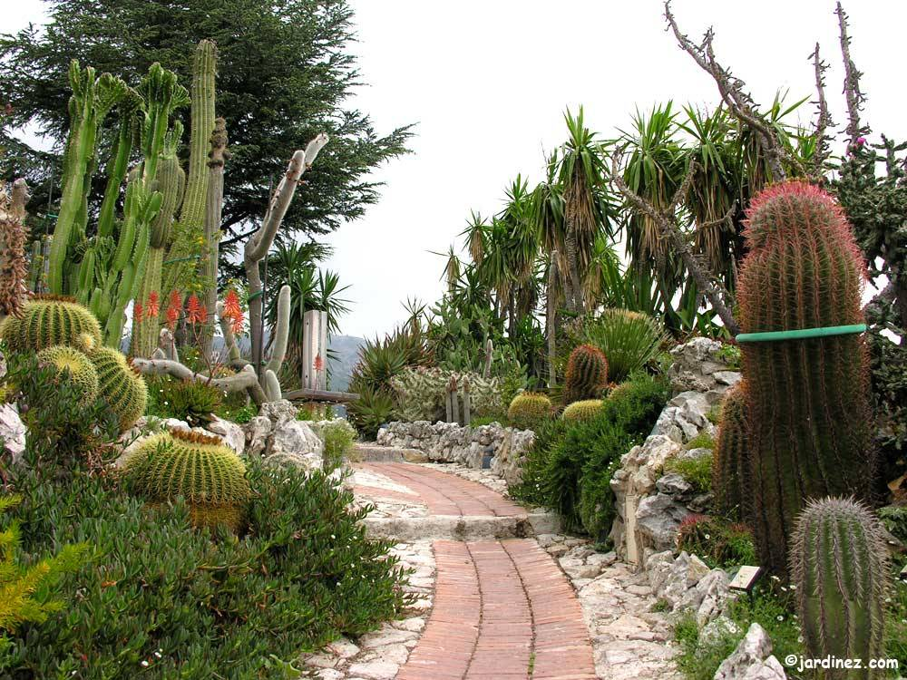 Exotic Garden Of Eze photo 3