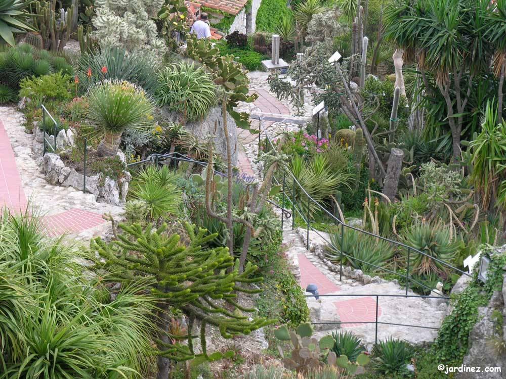 Jardin exotique d 39 eze photo 7 - Jardin exotique d eze ...
