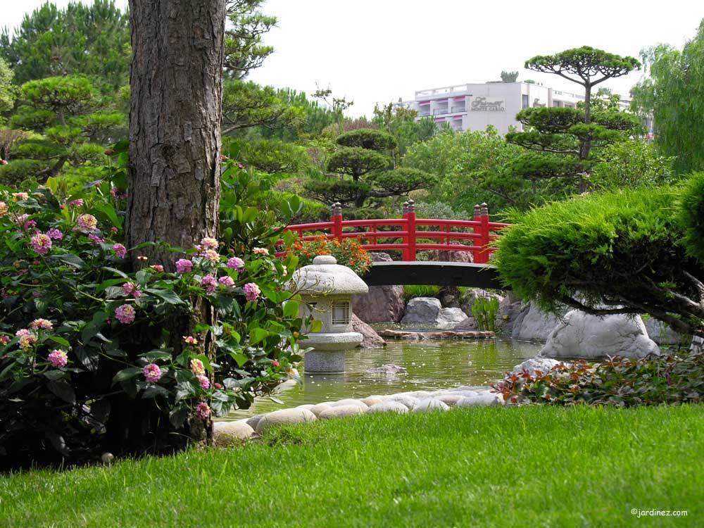 jardin japonais photo 4. Black Bedroom Furniture Sets. Home Design Ideas