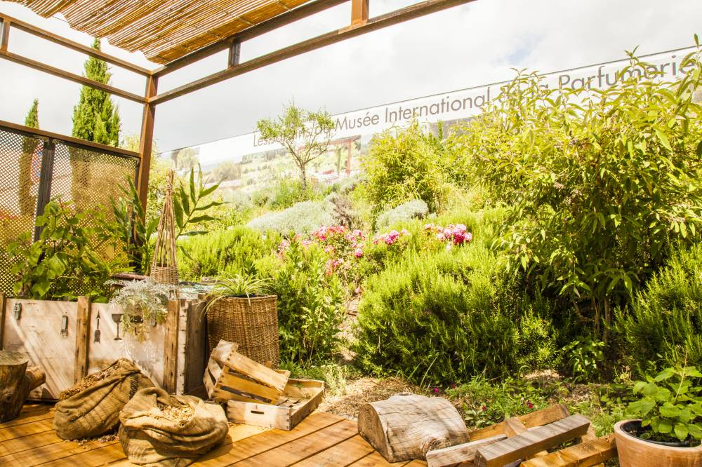 Les jardins du mus e international de la parfumerie photo 0 for Garage du park mouans sartoux