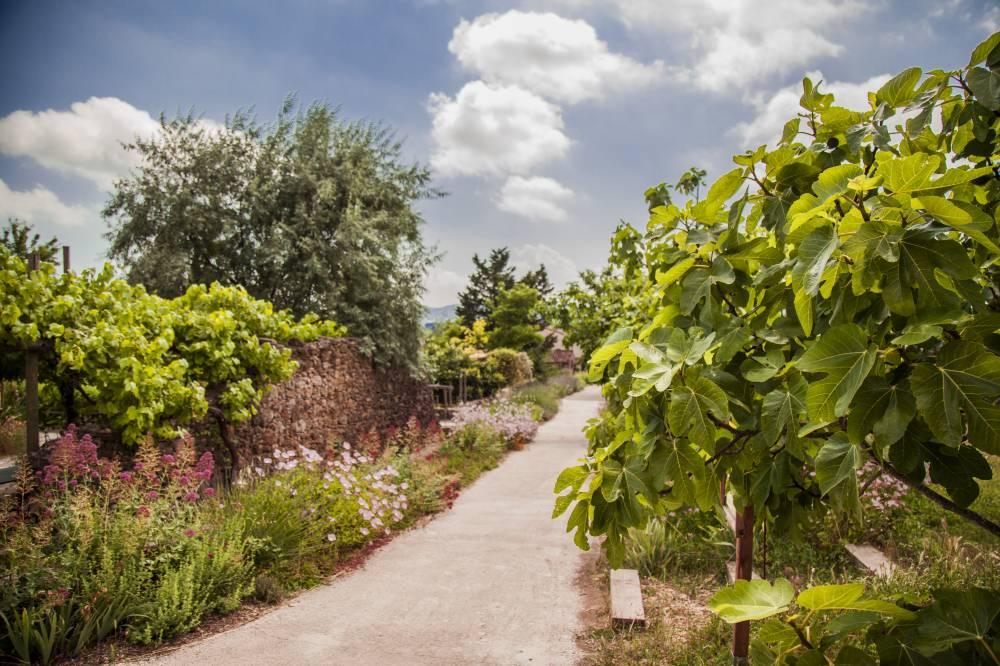 Les jardins du mus e international de la parfumerie photo 1 for Garage du park mouans sartoux