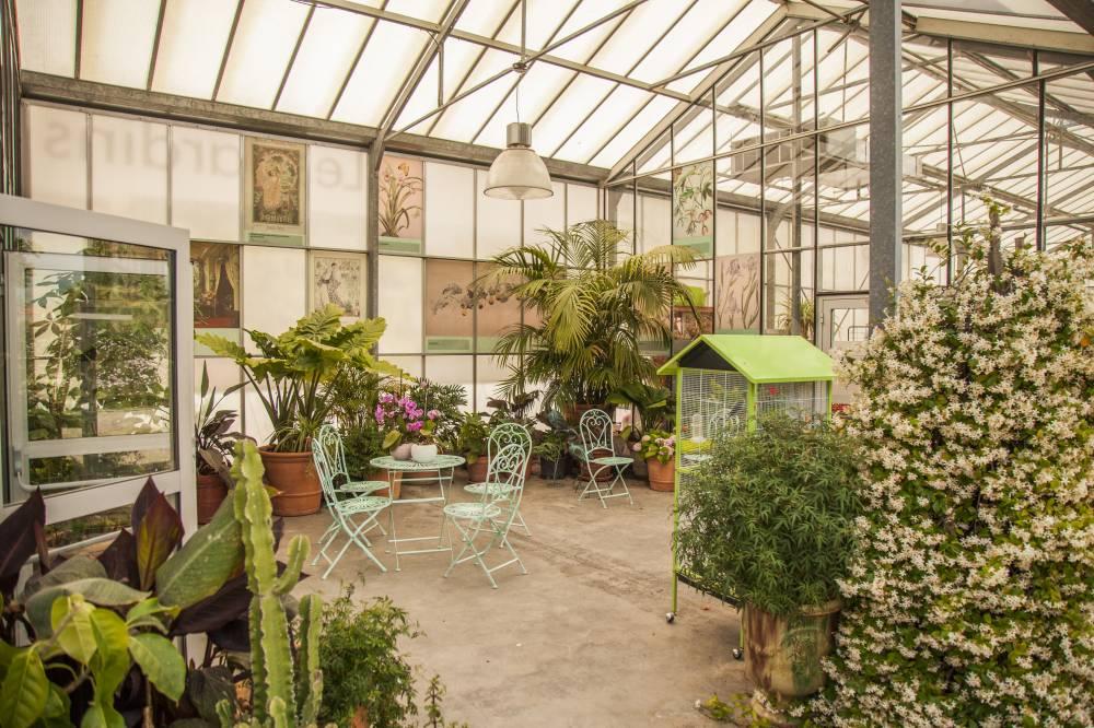 Les jardins du mus e international de la parfumerie photo 11 for Garage du park mouans sartoux