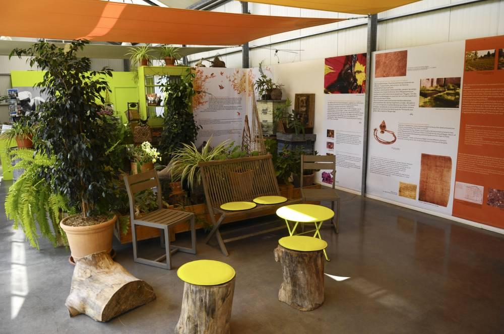 Les jardins du mus e international de la parfumerie photo 2 for Garage du park mouans sartoux