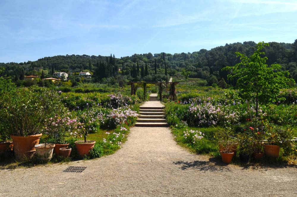 The Gardens of the International Perfumery Museum photo 6
