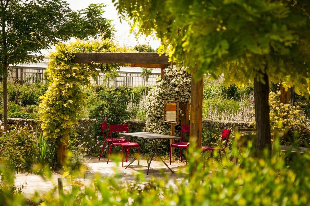 Les jardins du mus e international de la parfumerie photo 9 for Garage du park mouans sartoux