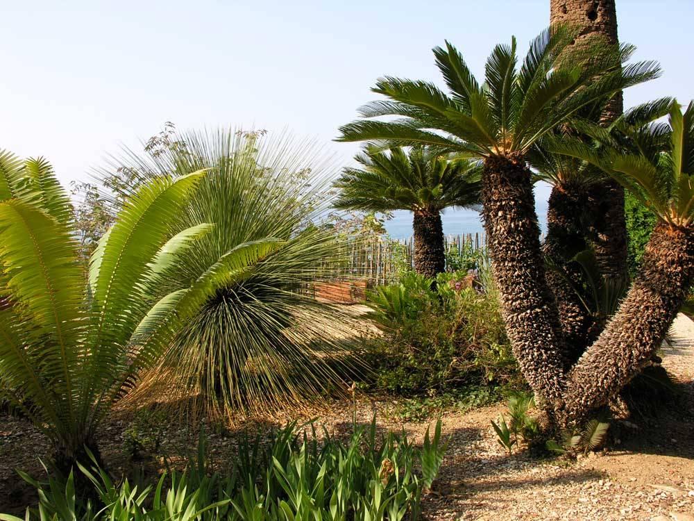 Gardens By Maria: The Garden Maria Serena Photo 12