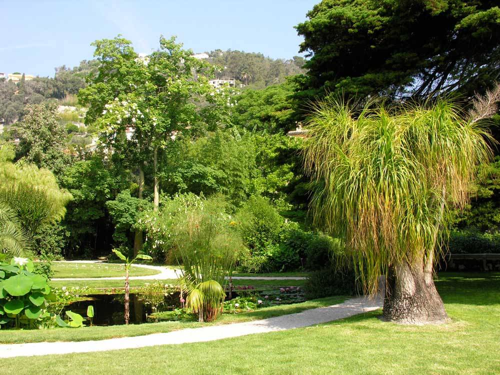 The Botanical Garden Of the Val Rahmeh photo 2