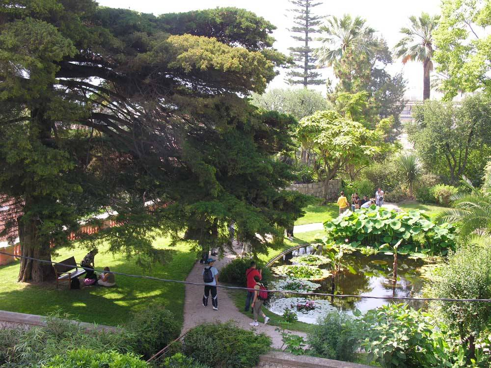 The Botanical Garden Of the Val Rahmeh photo 6