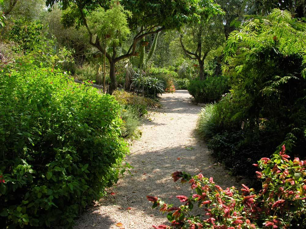 The Botanical Garden Of the Val Rahmeh photo 9