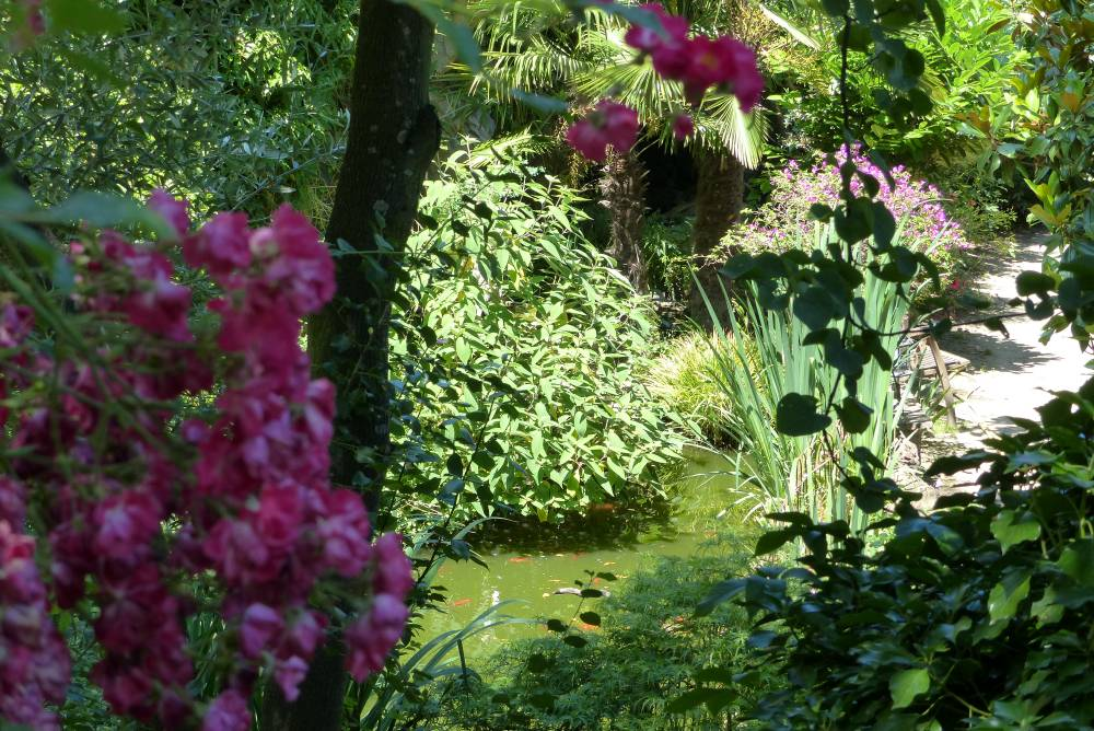 Le Jardin d'Eden photo 12