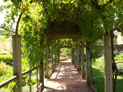 Giardino dell'Eden del castello di Colombier photo 11