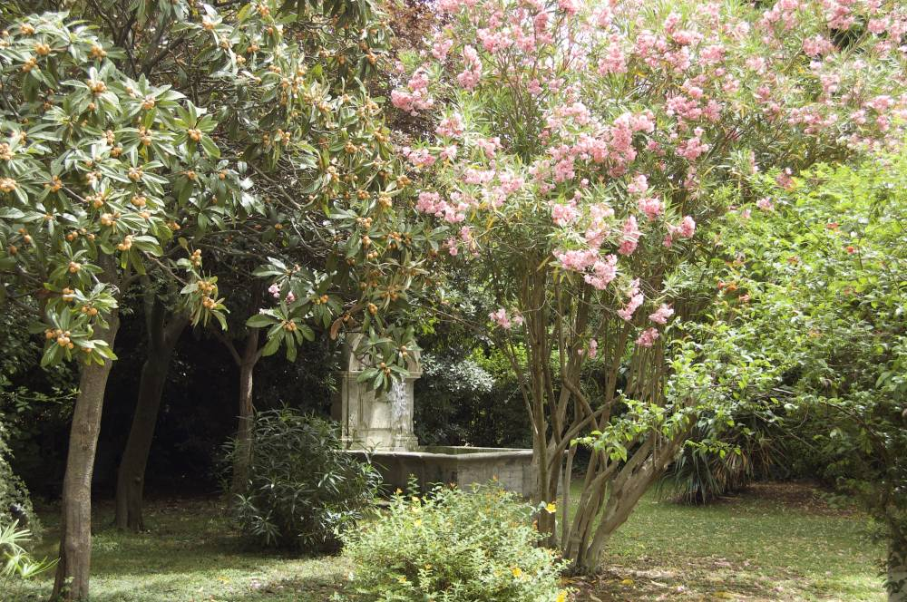 Jardin du Mas Ferrand photo 7