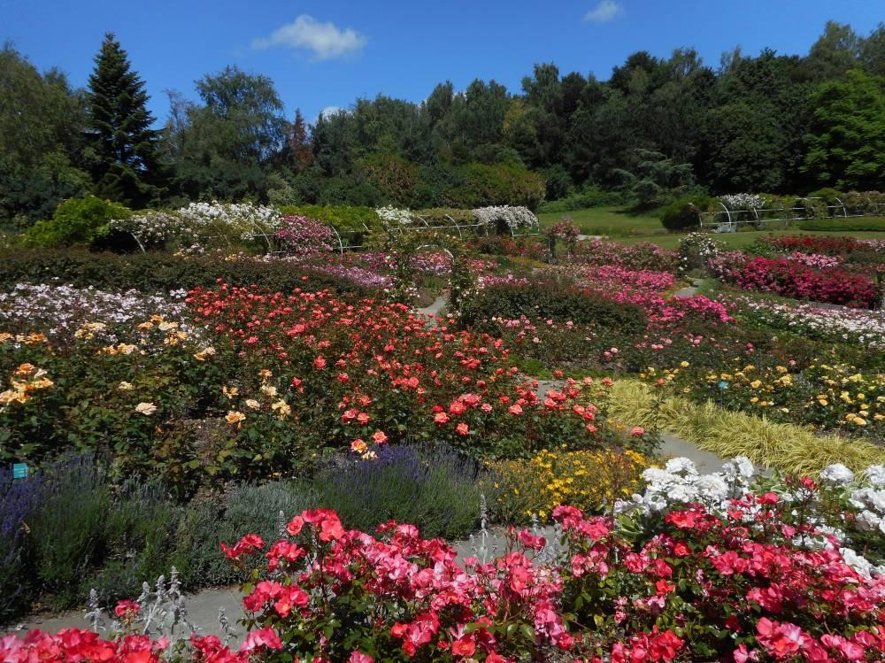 Parc floral de la colline aux oiseaux caen 14000 - La colline aux oiseaux caen ...