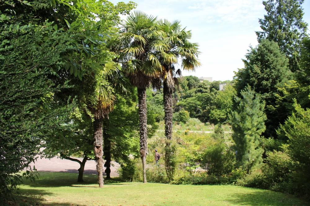 Le jardin des plantes et le jardin botanique de caen photo 2 - Le jardin des plantes caen ...