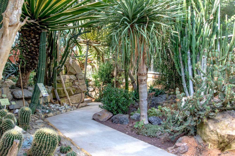Le jardin des plantes et le jardin botanique de caen photo 3 - Le jardin des plantes caen ...