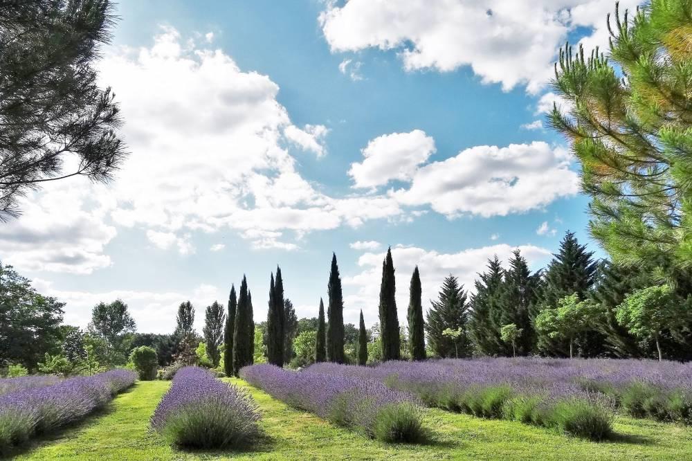 Tourisme en Nouvelle-Aquitaine : les parcs et jardins