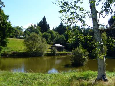 Arboretum di Neuvic d'Ussel photo 5