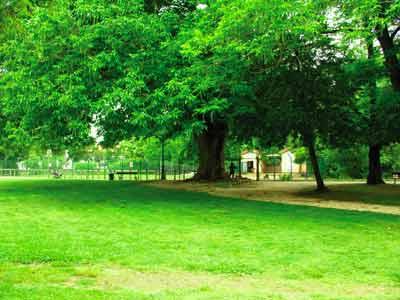 Jardin public de mont limar photo 5 for Store et jardin montelimar