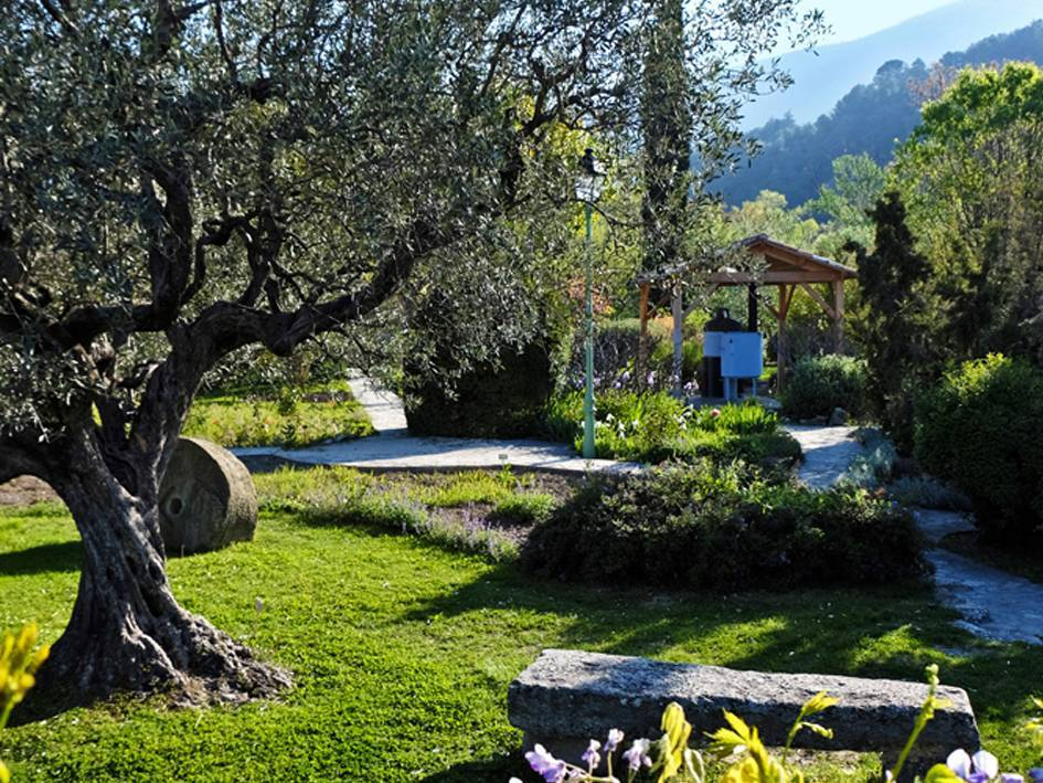 Garden Of Aromas photo 0