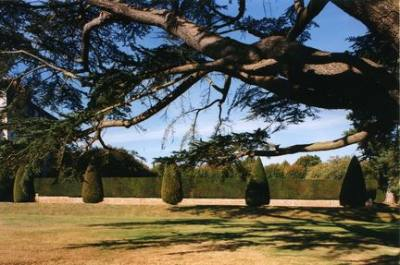 Park And Gardens Of Fontaine La Soret Castle photo 8