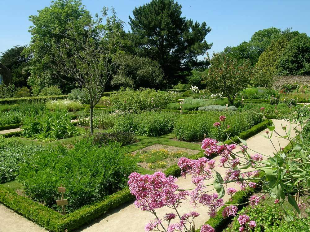 Daoulas Abbey Gardens photo 4