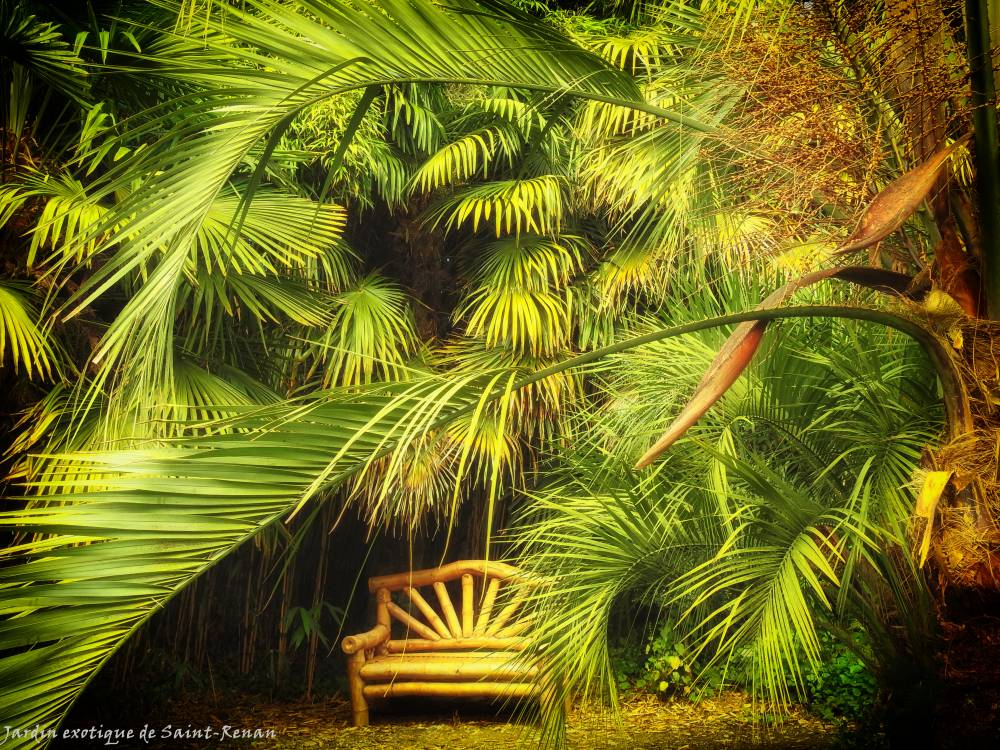 Jardin Exotique de Saint-Renan photo 6