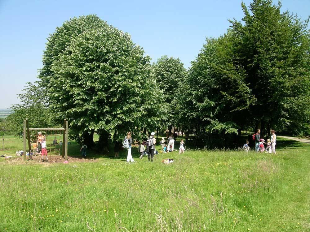 Parc et jardins du ch teau de tr varez saint goazec for Parc et jardin