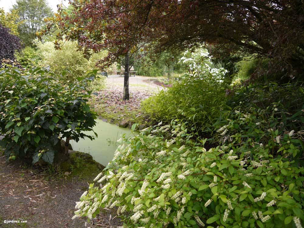 The Jean Huchet Arboretum photo 7