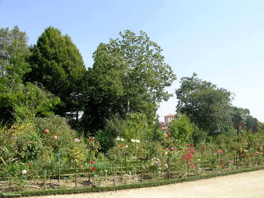 Jardin du Thabor photo 9