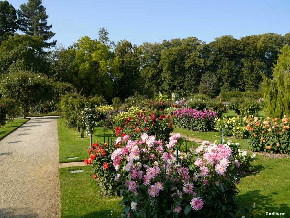 Jardin du Thabor photo 7