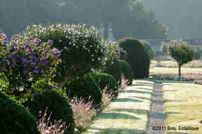 The Gardens Of Chenonceau Castle photo 6
