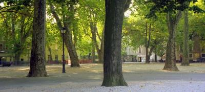 Jardin de Ville de Grenoble photo 3