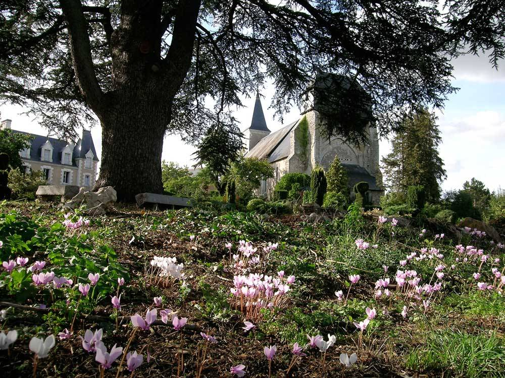 Botanical Garden of the Priory of Orchaise photo 0