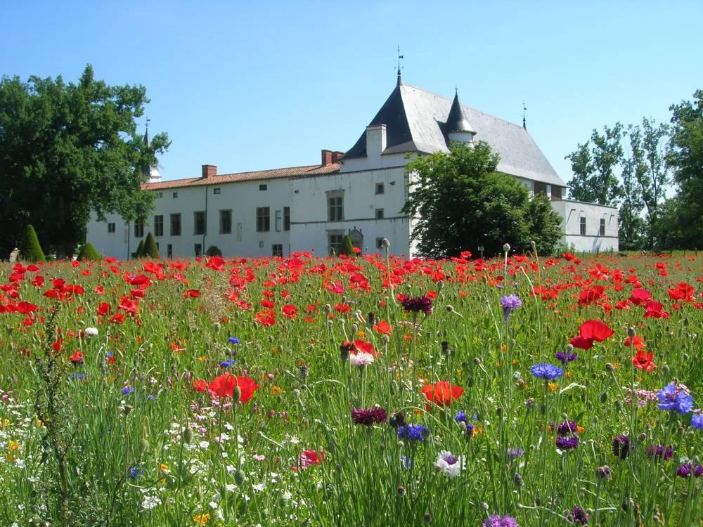 Jardins du ch teau de la bastie d 39 urf saint etienne le molard 42130 loire auvergne - Les jardins d arcadie st etienne ...