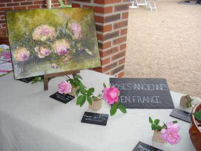 The Rose Garden Of Saint-Galmier photo 5