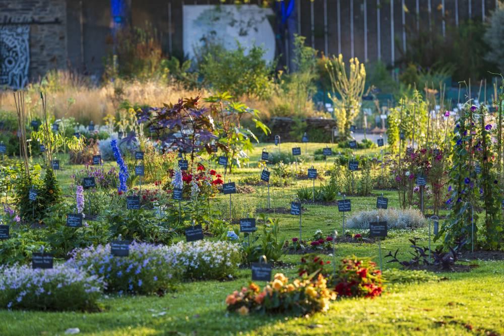Jardin des plantes de nantes photo 2 for Restaurant jardin des plantes nantes