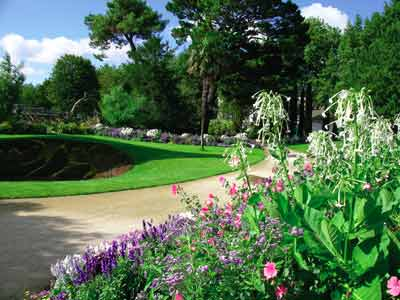 Jardin des plantes de Saint Nazaire  photo 7